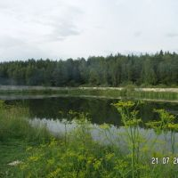 Pond, Правдинский