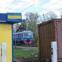Train, Правдинский
