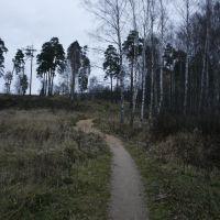 Тропинка от пешеходного моста через Ворю к проспекту Ленина_2, Привокзальный