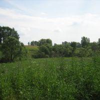 Полянка возле реки, Пролетарский