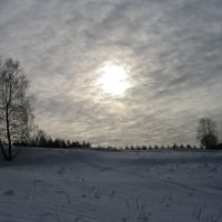 Zima, Пущино