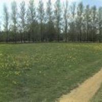 Панорама поля летом, Пущино