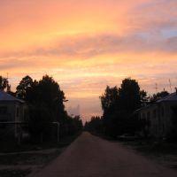 пос. Радовицкий мох. Июль 2005г., Радовицкий