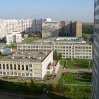 Школа №1026, Реутов