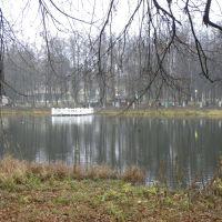 Малинковский пруд, Родники