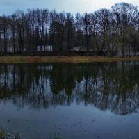 Озеро на теретории санатория Удельная, Родники