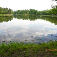 Быковский пруд, Родники