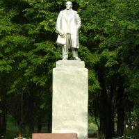 Памятник Ленину в Рошали, Рошаль