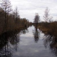 r. Voymega, Рошаль