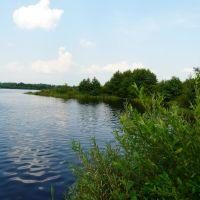 Рошаль,озеро земснаряд., Рошаль