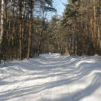 Зимняя дорога. Winter road, Рублево