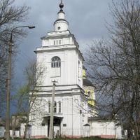 Колокольня церкви Покрова Пресвятой Богородицы / Belltower of Pokrova Presvjatoj Bogoroditsy Сhurch, Руза