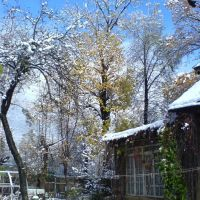 Ранний снег, Салтыковка