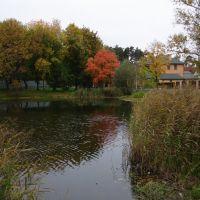 Золотой пруд, Салтыковка