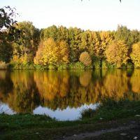 Озеро жёлтое, Салтыковка