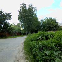 4-й Цветочный переулок, Салтыковка