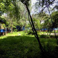Территория лагеря, Салтыковка