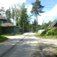 Никольское, Салтыковка