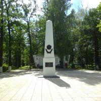 Памятник, Салтыковка