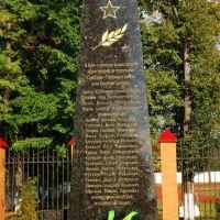 Мемориал павшим в ВОВ, Серебряные Пруды