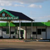Автобусная станция, Серебряные Пруды