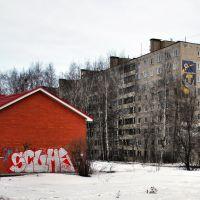 Спасибо! За мозаику родителям :) за граффити детям :(, Солнечногорск