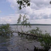 г.Солнечногорск. На берегу озера Сенеж. 2011г., Солнечногорск