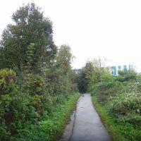 Дорога к вокзалу, Софрино