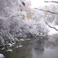 16 октября 2007 Пруд в Химкинском лесу около д.Терехово, Старбеево