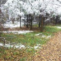 16 октября 2007 Химкинский лес, Старбеево