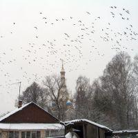 Birds over church, Старбеево
