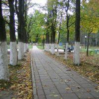 Наш парк, Сходня