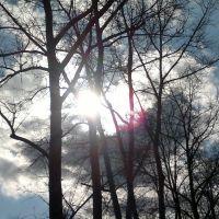 Солнце и облака, Сходня