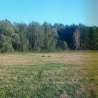 Панорама поля, Тишково