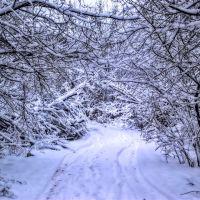 Entrance to the ice kingdom, Томилино