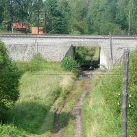 С бывшего моста..., Туголесский Бор