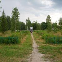 Центральная площадь посёлка Туголесский Бор. Tugolesskiy Bor. The central place, Туголесский Бор