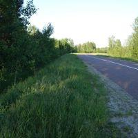 Дорога на Черусти. The road eastward, to Cheroosti, Туголесский Бор