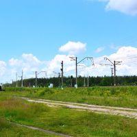 Железная дорога близ пл. Туголесье, Туголесский Бор