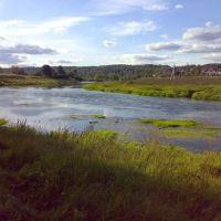 Москва река близ Тучково летом, Тучково