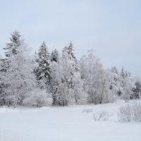 Зимняя сказка (www.lutchezar-yasenev.ya.ru), Уваровка
