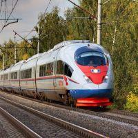 Siemens Velaro RUS (Sapsan) approaching Udelnaya railway platform, Удельная