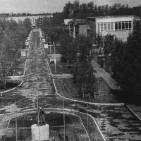 Вид аллеи с крыши штаба (1976), Удельная