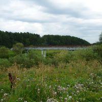 Старый мостик, Успенское