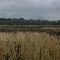 Вид на Спасскую церковь в Уборах, Успенское