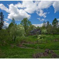 spring, Фирсановка