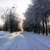 Зимняя дорога, Фирсановка