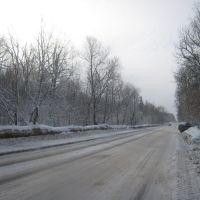 Firsanovka, Фирсановка