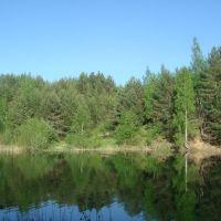 Лесной карьер., Фосфоритный