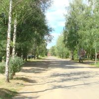 Дорога средь берёз., Фосфоритный